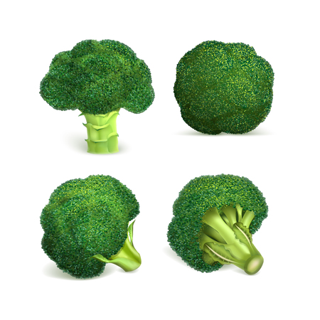 Broccoli icon set. Realistic set of broccoli vector icons for web design isolated on white background Vecteurs