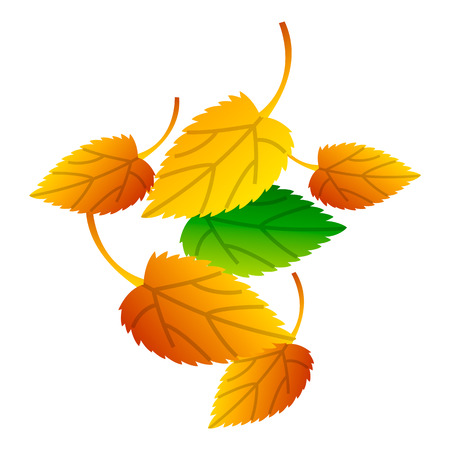 Autumn leaves icon. Isometric of autumn leaves icon for web design isolated on white background