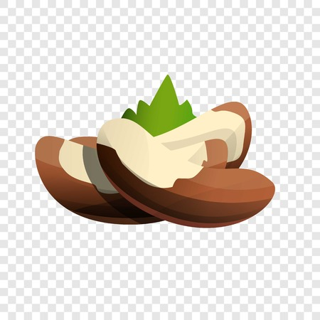 Brazil nut icon. Cartoon of brazil nut vector icon for web design