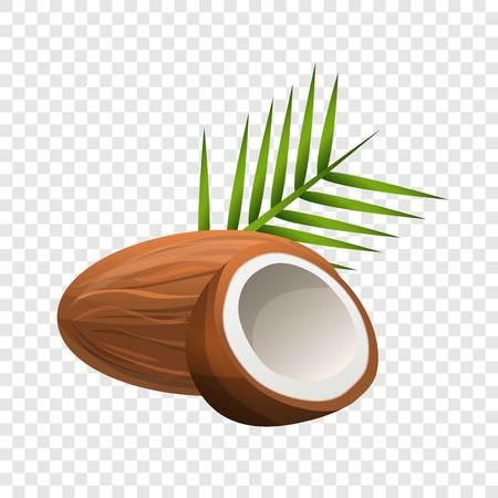 Coconut icon. Cartoon of coconut vector icon for web design