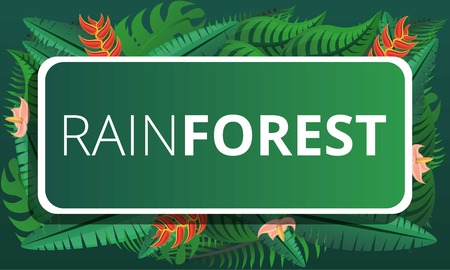 Green rainforest concept banner. Cartoon illustration of green rainforest vector concept banner for web design Иллюстрация