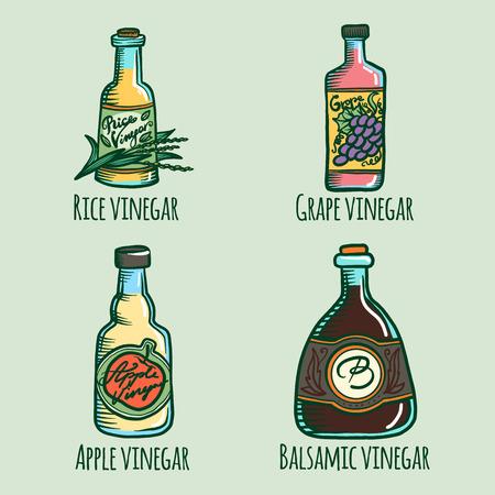 Conjunto de iconos de vinagre. Dibujado a mano conjunto de iconos de vector de vinagre para diseño web