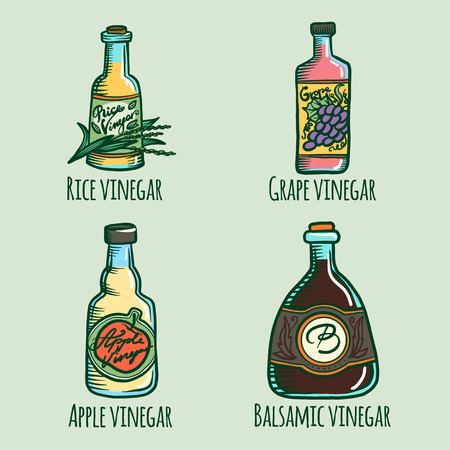 Vinegar icon set. Hand drawn set of vinegar vector icons for web design