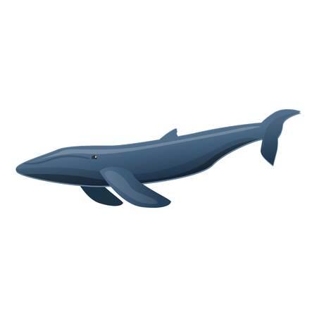 Sei whale icon. Cartoon of sei whale icon for web design isolated on white background Imagens