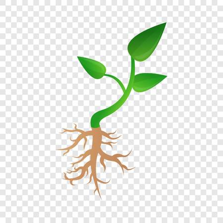 Small plant soybean icon. Cartoon of small plant soybean vector icon for web design for web design Illustration