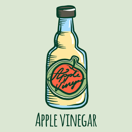 Apple vinegar icon. Hand drawn illustration of apple vinegar vector icon for web design