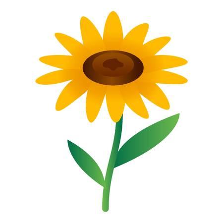 Sunflower icon. Isometric of sunflower icon for web design isolated on white background