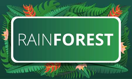 Green rainforest concept banner. Cartoon illustration of green rainforest concept banner for web design