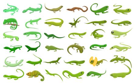 Lizard icons set. Cartoon set of lizard vector icons for web design