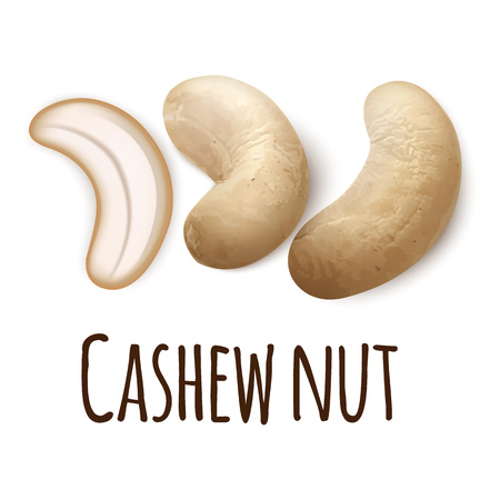 Cashew nut icon. Realistic illustration of cashew nut vector icon for web design isolated on white background Stock Illustratie