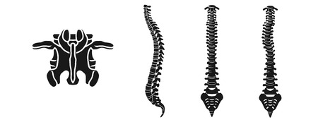 Spine icons set. Simple set of spine vector icons for web design on white background