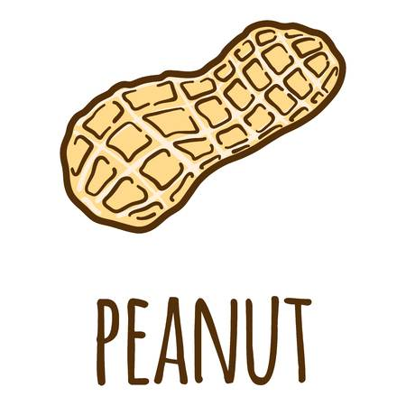 Peanut in shell icon. Hand drawn illustration of peanut in shell vector icon for web design Illustration