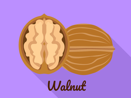Walnut icon. Flat illustration of walnut vector icon for web design