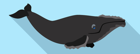 Right whales icon. Flat illustration of right whales vector icon for web design
