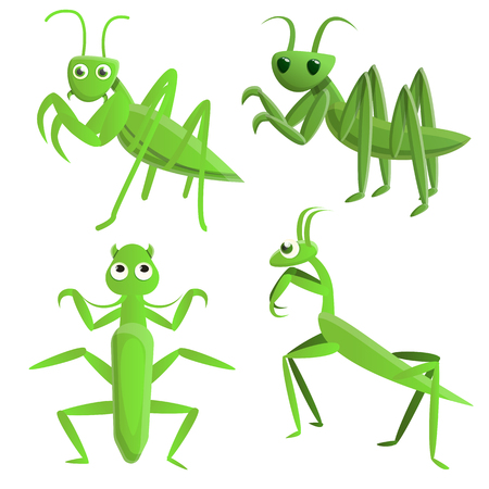 Mantis icons set. Cartoon set of mantis vector icons for web design