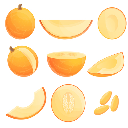 Melon icons set. Cartoon set of melon vector icons for web design