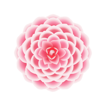 Camellia flower icon. Realistic illustration of camellia flower vector icon for web design isolated on white background