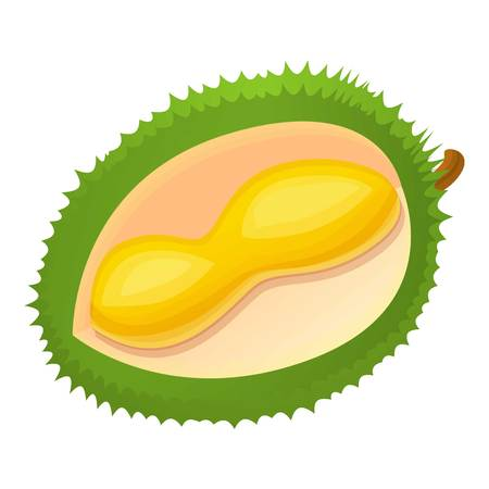 Cut part of durian icon. Cartoon of cut part of durian vector icon for web design isolated on white background Иллюстрация