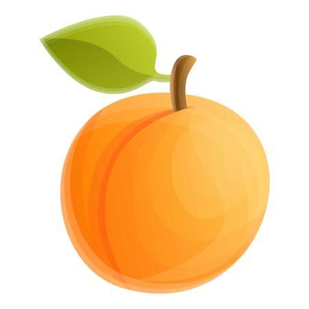 Gartenbaum-Aprikose-Symbol. Cartoon des Gartenbaum-Aprikosen-Vektorsymbols für Webdesign isoliert auf weißem Hintergrund