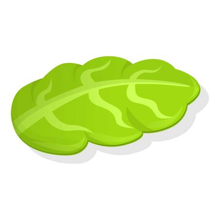 Salad icon. Cartoon of salad icon for web design isolated on white background