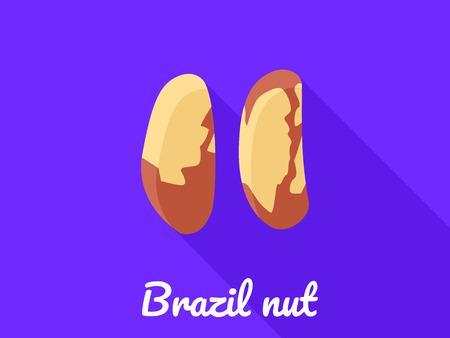 Brazil nut icon. Flat illustration of brazil nut icon for web design