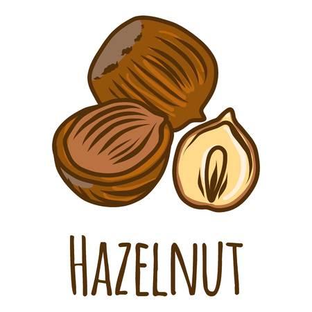 Hazelnut piece icon. Hand drawn illustration of hazelnut piece icon for web design