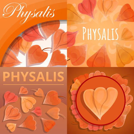Physalis fruit banner set. Cartoon illustration of physalis fruit banner set for web design