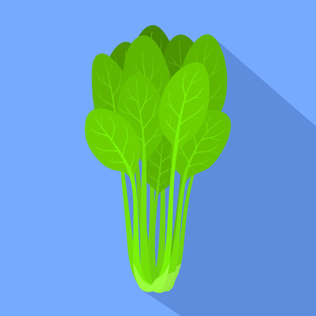 Spinach plant icon. Flat illustration of spinach plant icon for web design