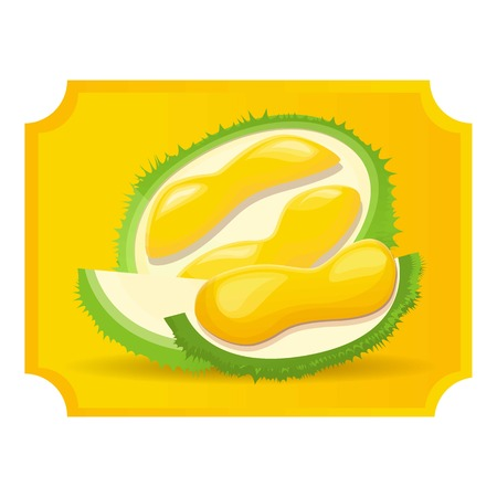 Cutted durian icon 版權商用圖片