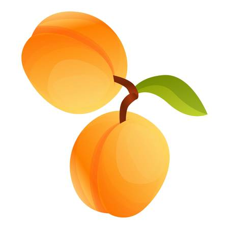 Apricot on branch icon. Cartoon of apricot on branch icon for web design isolated on white background Stok Fotoğraf - 123161655