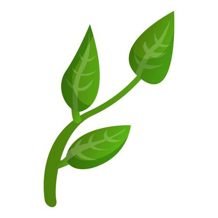 Matcha tea plant icon. Cartoon of matcha tea plant icon for web design isolated on white background Imagens - 127176776