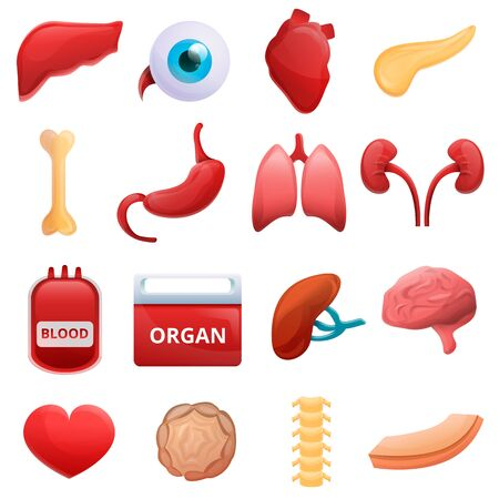 Donate organs icons set. Cartoon set of donate organs icons for web design