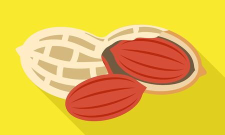 Peanut shell icon. Flat illustration of peanut shell vector icon for web design Illustration