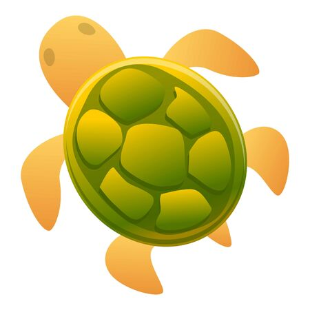 Kid turtle icon. Cartoon of kid turtle vector icon for web design isolated on white background