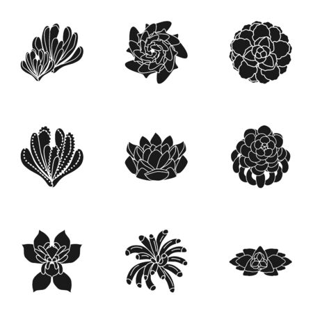 Succulent plant icon set. Simple set of 9 succulent plant vector icons for web design isolated on white background