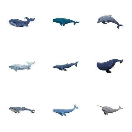 Sea whale icon set. Cartoon set of 9 sea whale vector icons for web design isolated on white background