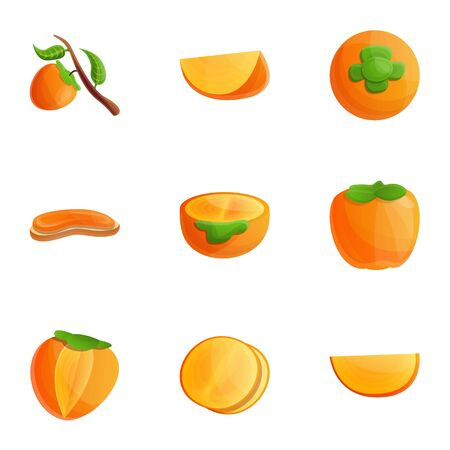 Persimmon fruit icon set. Cartoon set of 9 persimmon fruit vector icons for web design isolated on white background