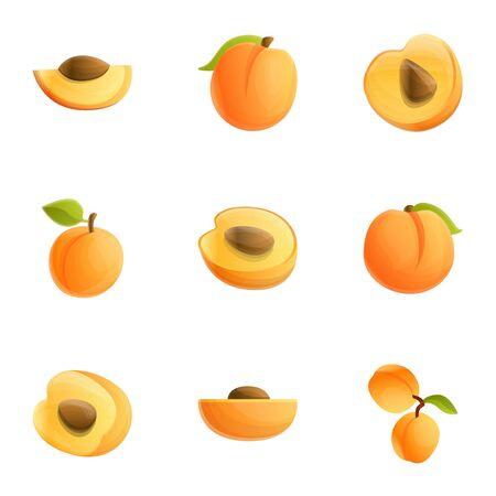 Orange peach icon set. Cartoon set of 9 orange peach vector icons for web design isolated on white background