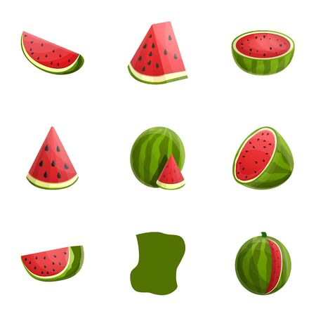 Tasty watermelon icon set. Cartoon set of 9 tasty watermelon vector icons for web design isolated on white background