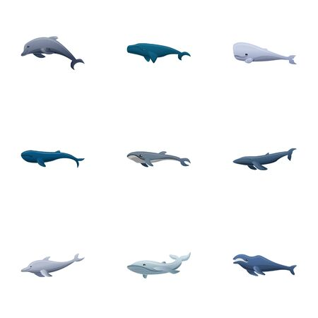 Pacific whale icon set. Cartoon set of 9 pacific whale vector icons for web design isolated on white background Ilustração