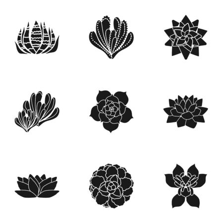 Cacti succulent icon set. Simple set of 9 cacti succulent vector icons for web design isolated on white background