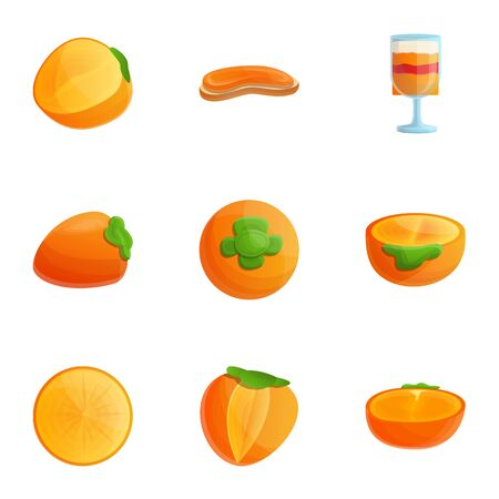 Vegan persimmon icon set. Cartoon set of 9 vegan persimmon vector icons for web design isolated on white background Ilustracja