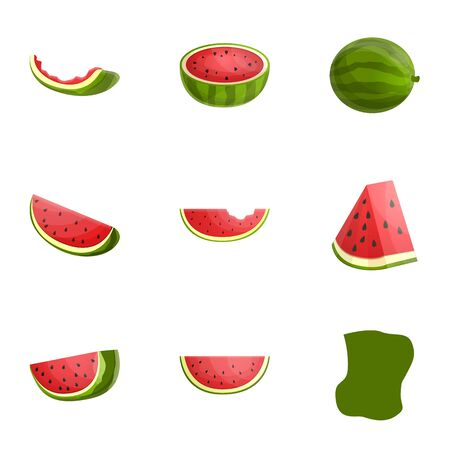 Vegan watermelon icon set. Cartoon set of 9 vegan watermelon vector icons for web design isolated on white background