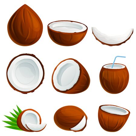 Coconut icons set. Cartoon set of coconut vector icons for web design