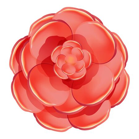 Red rose camellia icon. Cartoon of red rose camellia vector icon for web design isolated on white background Illustration