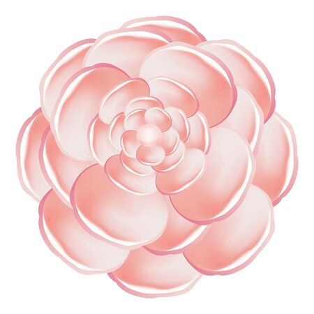 Light pink camellia icon. Cartoon of light pink camellia vector icon for web design isolated on white background