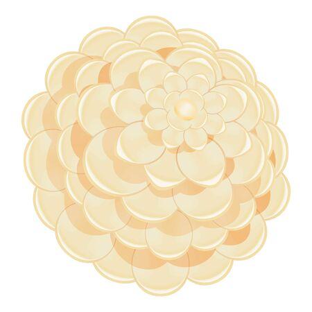 White camellia icon. Cartoon of white camellia vector icon for web design isolated on white background