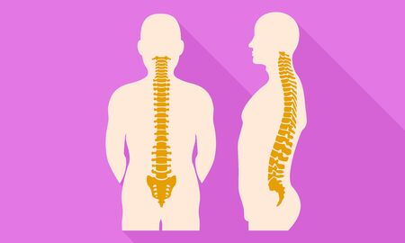 Human spine icon. Flat illustration of human spine vector icon for web design