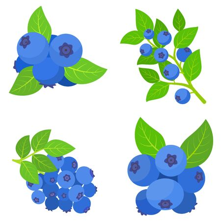 Bilberry icons set. Flat set of bilberry icons for web design