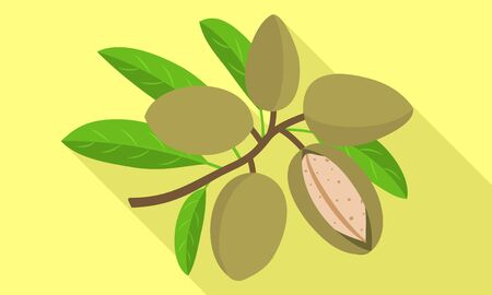 Almond branch icon. Flat illustration of almond branch icon for web design
